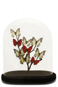 Vintage Butterfly Domes