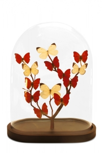 Modern Oval Butterfly Domes